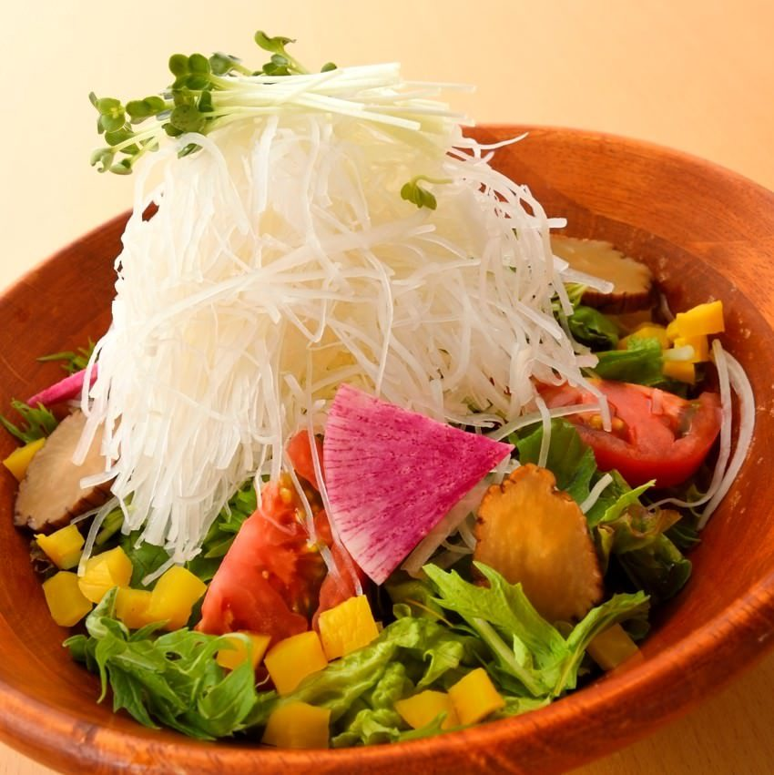 健康美菜!五種の大根を楽しむサラダ