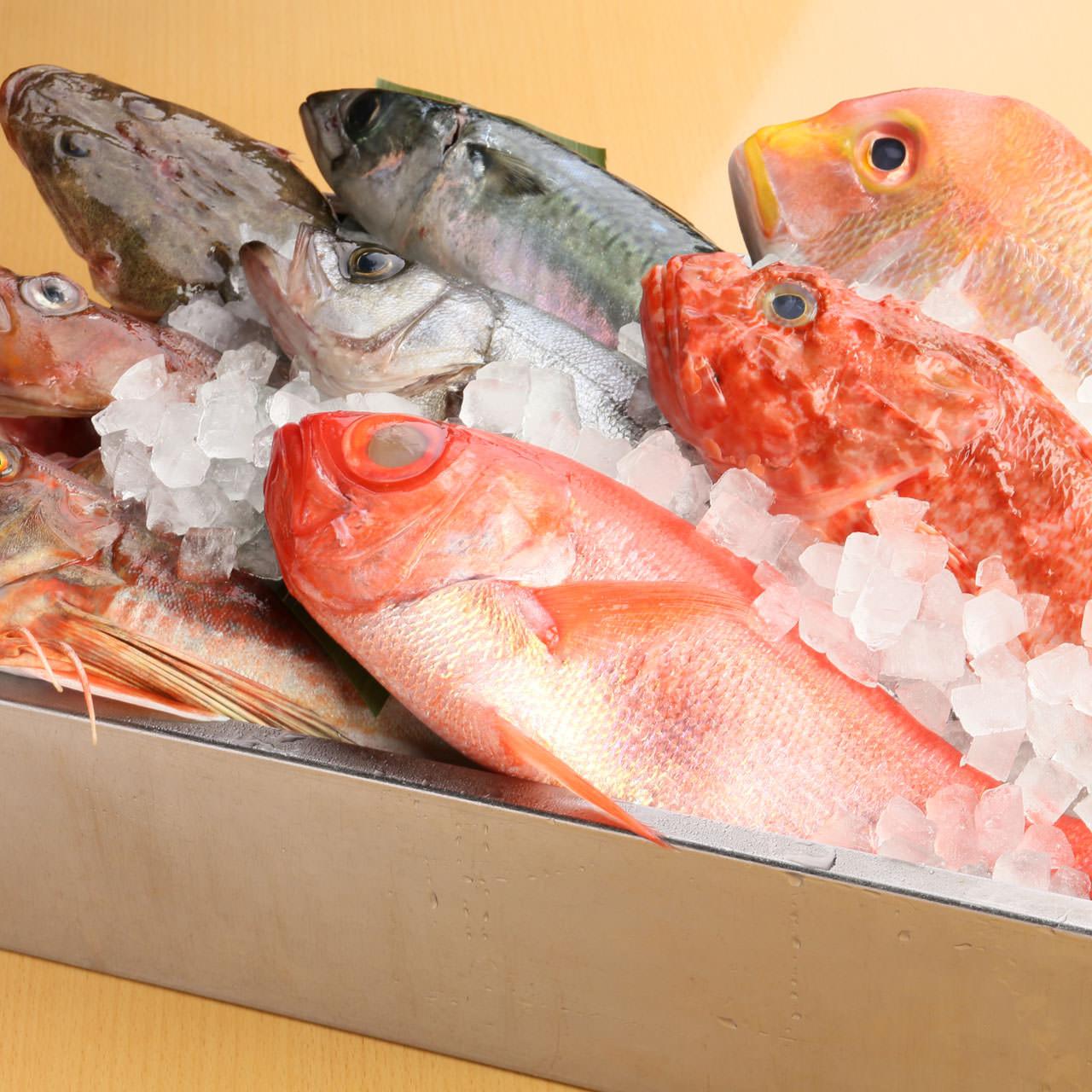 日替わり鮮魚(単品)
